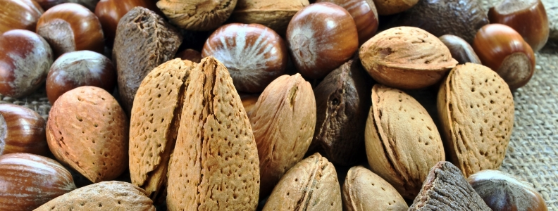 4 Reasons Why We Should Eat Nuts