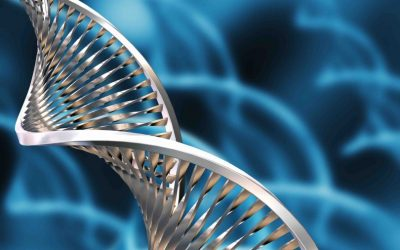 Reach Your Health Goals by Knowing Your DNA